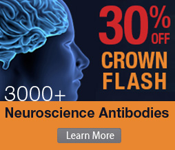 "October ""Crown Flash"" 3,000 Neuroscience Antibodies"