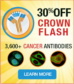 30% off on 3,600+ Cancer Antibodies. Promo code  <span class=text-red >FLASH21</span>.