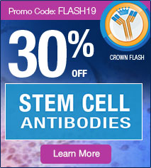 30% off on 400+ Stem Cells Antibodies. PromoCode: <span class=text-red>FLASH19</span>