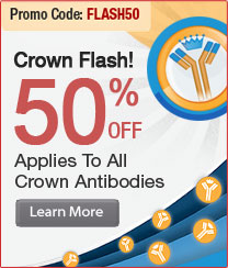 """Crown Flash""  50 % off on 2,500+ Crown Antibodies. PromoCode:<span class=text-red> FLASH50"
