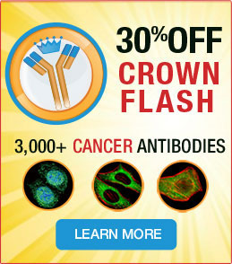 Crown Flash17-30% Off