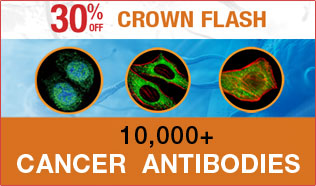 "January ""Crown Flash"" 10,000+ Cancer Antibodies"