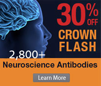 30% off on 2,800+ Neuroscience Antibodies. PromoCode:<span class=text-red> FLASH20