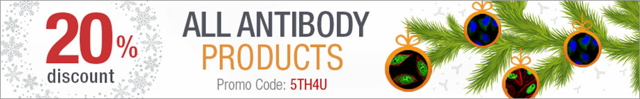 Receive 20% Discount on All Antibody Products