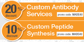 Custom Services Promotion