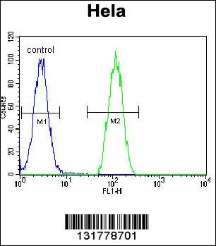 FC - INS (Insulin) Antibody (Center) AP7277c
