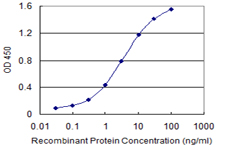 E - ABCC4 Antibody (monoclonal) (M03) AT1006a