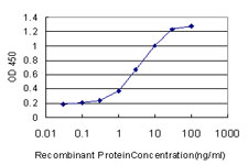 E - ARNT Antibody (monoclonal) (M01) AT1199a