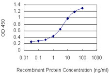 E - BCL11A Antibody (monoclonal) (M03) AT1281a