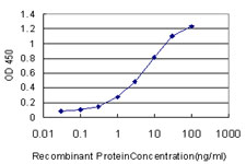 E - BSCL2 Antibody (monoclonal) (M01) AT1314a