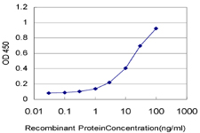 E - C1orf38 Antibody (monoclonal) (M01) AT1337a