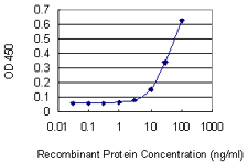 E - C20orf102 Antibody (monoclonal) (M01) AT1340a