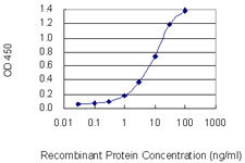 E - C20orf31 Antibody (monoclonal) (M01) AT1342a