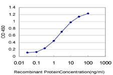 E - C9orf61 Antibody (monoclonal) (M01) AT1350a