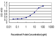 E - C9orf86 Antibody (monoclonal) (M01) AT1351a