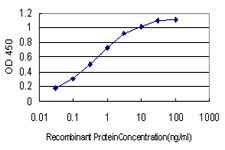 E - CDR2 Antibody (monoclonal) (M01) AT1484a