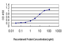 E - CDX4 Antibody (monoclonal) (M08) AT1488a