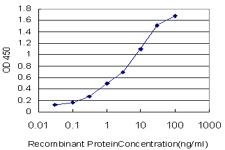 E - CHST11 Antibody (monoclonal) (M01) AT1530a