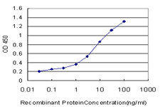 E - CPSF6 Antibody (monoclonal) (M10) AT1613a