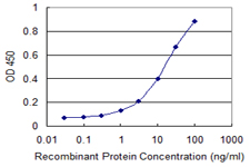 E - CRSP8 Antibody (monoclonal) (M01) AT1634a