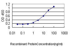 E - CRSP9 Antibody (monoclonal) (M01) AT1635a