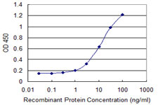 E - CTNNB1 Antibody (monoclonal) (M07) AT1675a