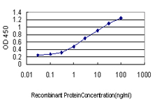 E - DCP1A Antibody (monoclonal) (M06) AT1717a