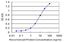 E - DDX56 Antibody (monoclonal) (M03) AT1741a