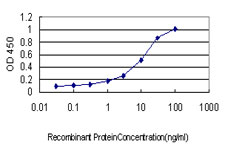 E - DST Antibody (monoclonal) (M01) AT1822a