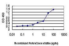 E - EDN1 Antibody (monoclonal) (M01) AT1850a