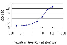E - EDN3 Antibody (monoclonal) (M01) AT1852a