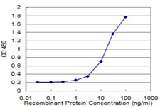 E - EEF1D Antibody (monoclonal) (M04) AT1856a
