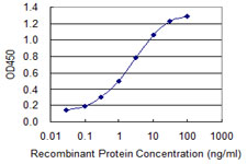 E - EIF4G1 Antibody (monoclonal) (M01) AT1880a