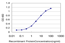E - EIF4G1 Antibody (monoclonal) (M10) AT1881a