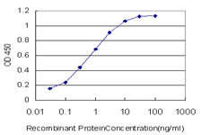 E - EP300 Antibody (monoclonal) (M02) AT1920a