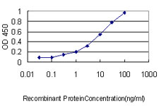 E - EPDR1 Antibody (monoclonal) (M01) AT1924a