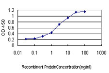 E - GRID1 Antibody (monoclonal) (M01) AT2262a