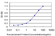 E - HCLS1 Antibody (monoclonal) (M02) AT2329a