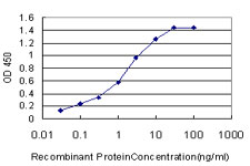 E - HCRTR2 Antibody (monoclonal) (M01) AT2331a