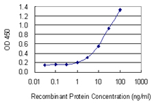 E - HPX Antibody (monoclonal) (M01) AT2435a