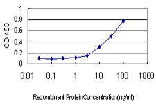E - IFRD2 Antibody (monoclonal) (M01) AT2490a