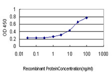 E - IGSF6 Antibody (monoclonal) (M01) AT2495a