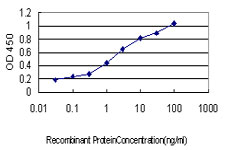 E - IRF1 Antibody (monoclonal) (M01) AT2540a