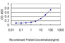 E - ISGF3G Antibody (monoclonal) (M02) AT2559a