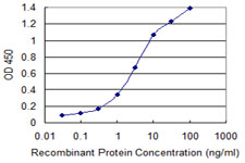 E - ISL2 Antibody (monoclonal) (M03) AT2562a