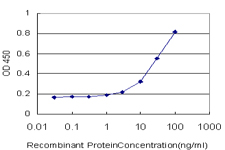E - LY75 Antibody (monoclonal) (M10) AT2752a