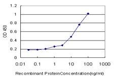 E - MAP2K6 Antibody (monoclonal) (M02) AT2773a