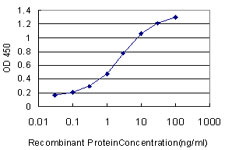 E - MED8 Antibody (monoclonal) (M01) AT2833a