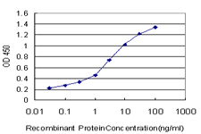 E - MFGE8 Antibody (monoclonal) (M09) AT2849a