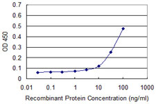 E - MPG Antibody (monoclonal) (M08) AT2889a